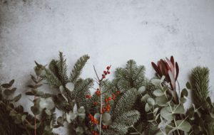 Seasonal Stress: Supporting Mental Health in the Workplace